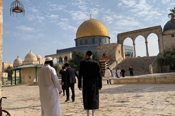 منظمات الهيكل المزعوم تخطط لاقتحام المسجد الأقصى في 28 رمضان