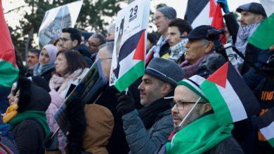 من أمام المحكمة الدولية في لاهاي.. دعوات لإزالة جدار الفصل العنصري في فلسطين